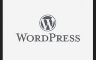 Who to Work Online WordPress